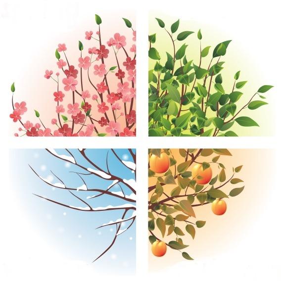 Stravování podle tradiční čínské medicíny v rámci ročních období